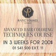 Advanced Hair Coloring Techniques Course « Lebtivity