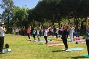 Free Yoga at Horsh Beirut: Sun Salutation Training