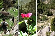 Jabal Mousa – Guided Loop Hike with Lunch