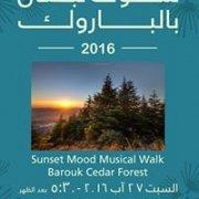 Sunset Musical Walk