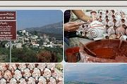 Discovering Rashaya El Fokhar with Green Steps : hiking, village tour, pottery demo, Lebanese lunch