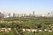 Discover Horsh Beirut with Nahnoo