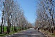 Qaraoun Lake Ride (3 levels) with Cycling Circle