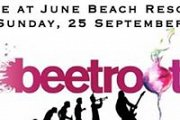 Beetroot Live