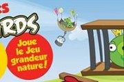 Retrouve les Angry Birds!
