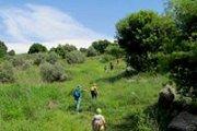 Hiking Hasbaya - Ebil Saki & Visiting Arnoun Castle with Wild Adventures