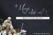 Mary's White Veil | Born from Ruins - Christmas Arrangements