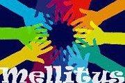 """Launch of """"MELLITUS"""", a Diabetes Association"""