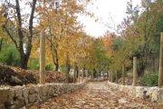 Autumn colors hiking with Mashaweer