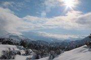 Snowshoeing Tannorine Reserve with Wild Adventures