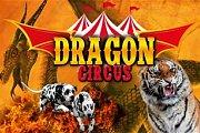 Dragon Circus 2017