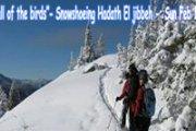Call of the birds -Snowshoeing Hadath El Jibbeh