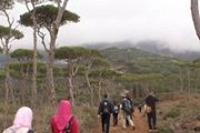 Hiking from Jezzine to Room - South