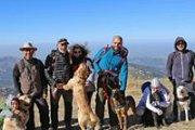 Zaarour-Mtein Walk with your dog / Marche avec ton chien