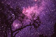 Lebanese Adventure: Night of the shooting stars - Perseides