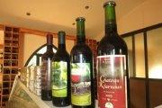 Wine Tour in Batroun with Dale Corazon