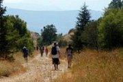 Hiking Trip at Barouk Cedar Reserve
