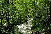 Mishmish-Wadi Jahanam Hike with Wild Adventures