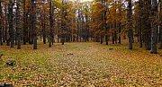 Qammouaa In Autumn with Wild Adventures