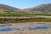 Nabi Safa to Sahl El-Marj in Kfarmechki