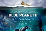 Blue Planet II: One Ocean