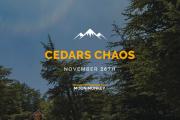 Cedars Chaos