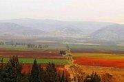 Aana Autumn Leaves: Hiking, Planting and Wine Tasting in West Bekaa