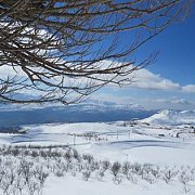 Laqlouq Snowshoeing with Vamos Todos