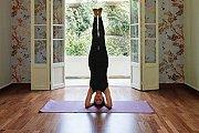 Morning Yoga Open Class