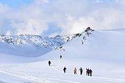Cedars SnowShoeing - HighKings
