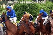 Sunday Afternoon Races!