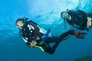 Try Scuba Diving with Stingray Divers