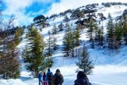 Snowshoeing Shouf Reserve | ProMax