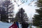 Snowshoeing Hadath el Jebbeh | ProMax