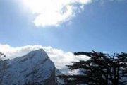 Tannourine-Hardine Hike with Wild Adventures