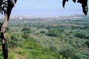 Batroumine Koura Hike with Adventures in Lebanon