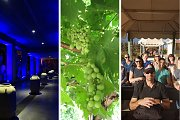 Beqaa Wine Tour and Tasting with Lunch | Living Lebanon