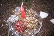 Atelier de décoration de Noël et picnic en forêt  avec Neos Kids