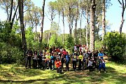 Jezzine-Bkassine Forest Hike with Wild Adventures