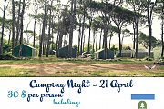 Camping Night - 21 APR