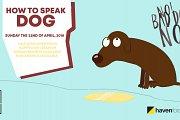 Q&A - How to speak dog!