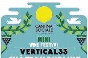 Mini Wine Fest