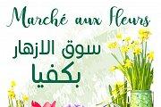 Marche aux Fleurs Bikfaya