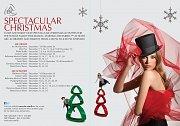 Spectacular Christmas - Animation at ABC