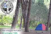 Camping in Rwayset El-Ballout Pine Forest with Footprints Club