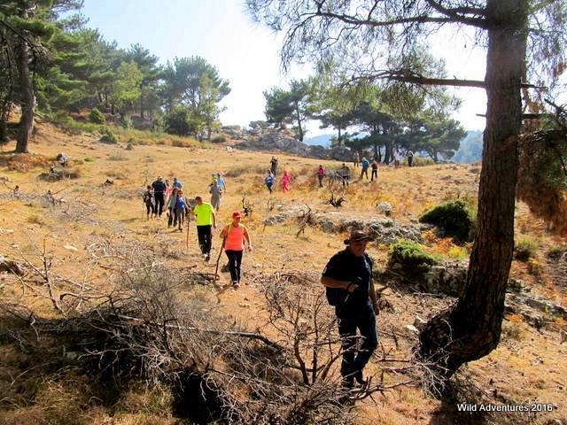 Akkar Al Aatiqa Hike With Wild Adventures Lebtivity