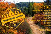 Hiking Ehden Forest Reserve with Lebanon Outdoor Activities