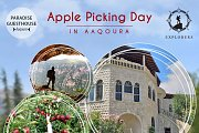 Apple Picking - Camping in Akoura
