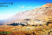"""Sur le Sentier des Cèdres"": Hiking the Cedars Trail with GREEN STEPS"