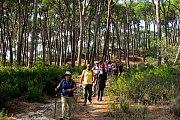 Roum-Rimat Hike with Wild Adventures